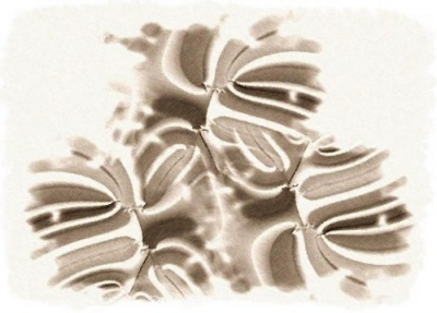 fiori frattali