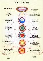 Il riequilibrio dei chakras: introduzione
