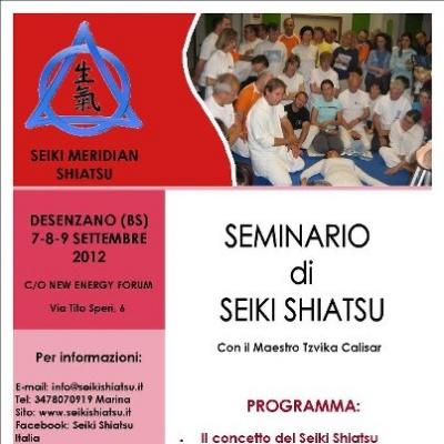 Seminario di Seiki Shiatsu a Desenzano