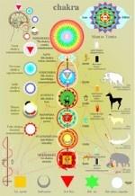 Il corpo dÔÇÖenergia