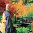 La postura a sedere nella meditazione zen